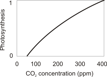 how does carbon dioxide concentration affect the rate of photosynthesis